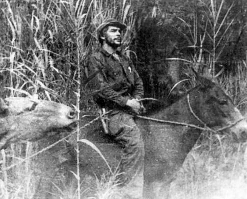 che-mule